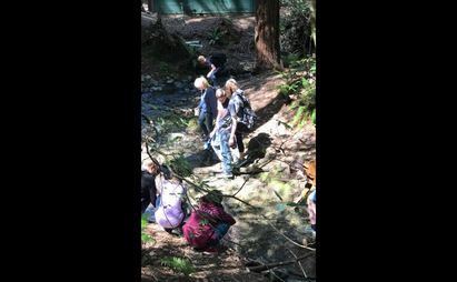 Ninth graders near a stream in a forest